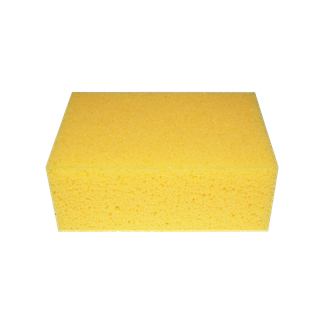 Professional Hydro Sponge